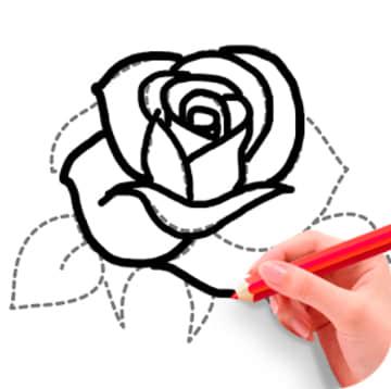 学画花朵 - 简笔画入门的好帮手 - Android 应用 - 【最美应用】